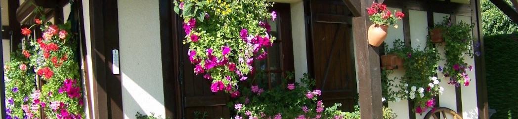 maison fleurie2